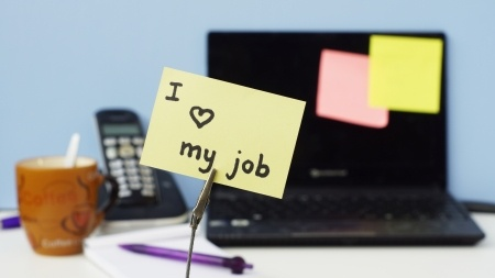 Do you love your job?