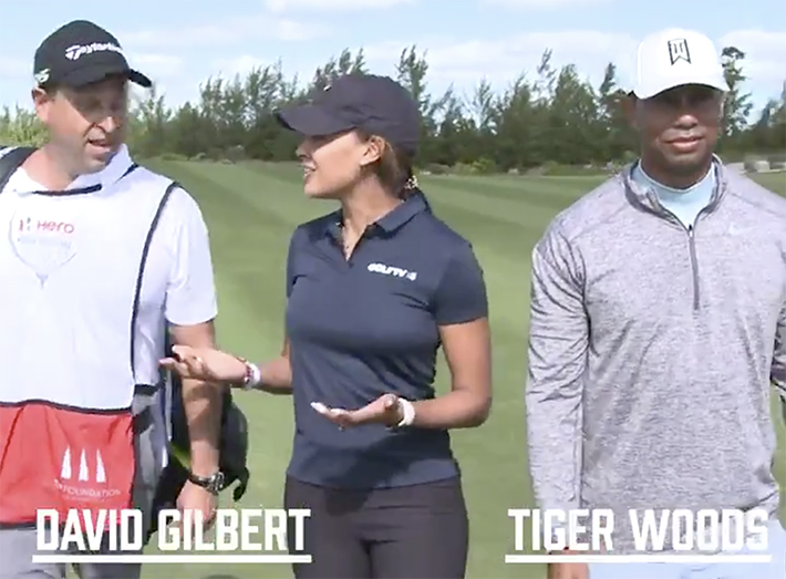 David Gilbert - Tiger Woods